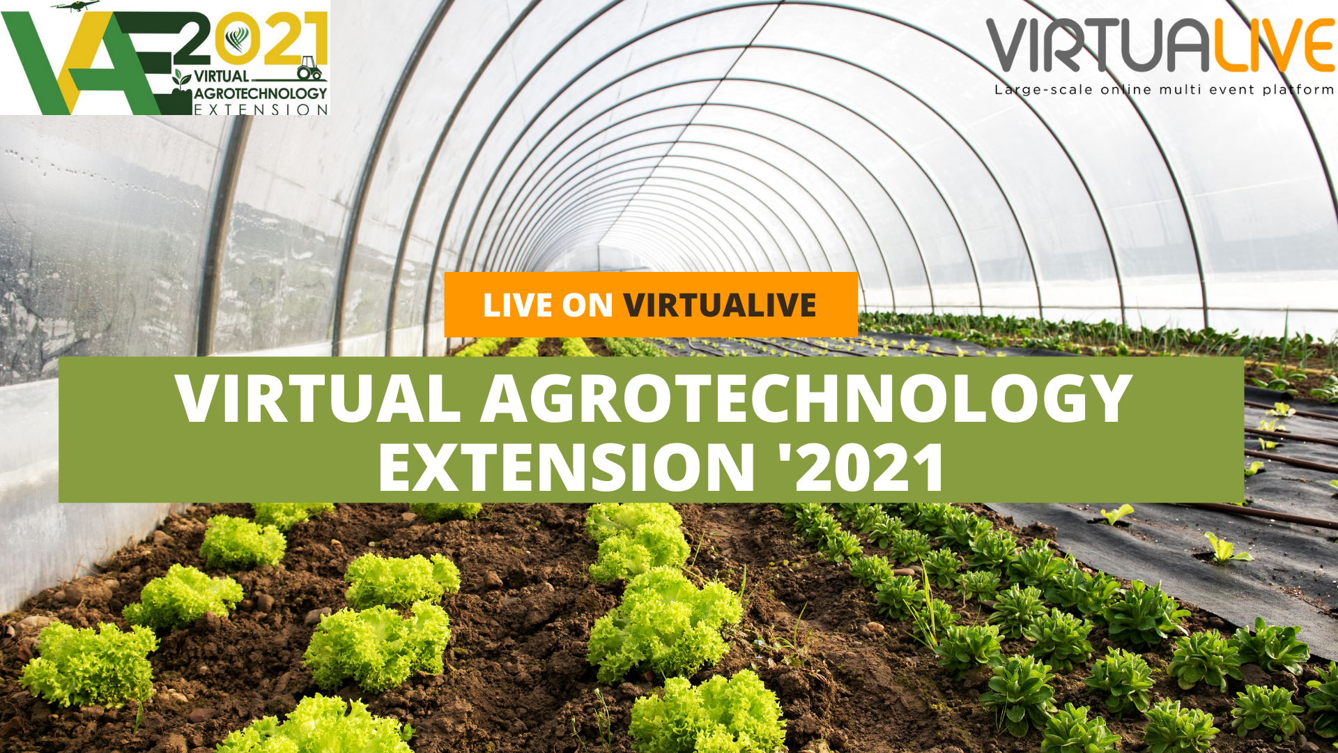 Virtual Agrotechnology extension 2021